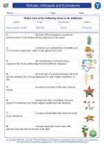 Science - Sixth Grade - Vocabulary: Mollusks, Arthropods and Echinoderms