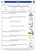 Ecology I. High School Biology Worksheets and Answer Keys ...