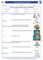 Biology - High School - Vocabulary: Food Chains and Food Webs