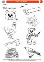 English Language Arts - Kindergarten - Worksheet: Circle _aw words.