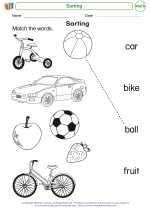 Mathematics - Kindergarten - Worksheet: Sorting