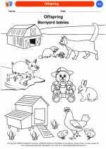 Science - Kindergarten - Worksheet: Offspring
