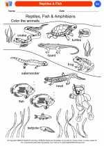 Science - Kindergarten - Worksheet: Reptiles & Fish
