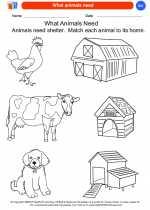 Science - Kindergarten - Worksheet: What animals need
