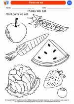 Science - Kindergarten - Worksheet: Plants we eat