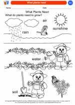 Science - Kindergarten - Worksheet: What plants need