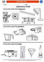 Science - Kindergarten - Worksheet: Laboratory tools