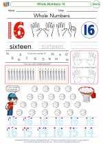 Mathematics - Kindergarten - Worksheet: Whole Numbers 16