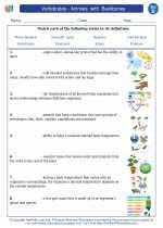 Science - Fourth Grade - Vocabulary: Vertebrates - Animals  with  Backbones