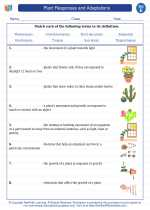 Science - Fifth Grade - Vocabulary: Plant Responses and Adaptations