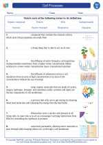 Science - Seventh Grade - Vocabulary: Cell Processes