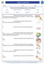 Science - Eighth Grade - Vocabulary: Organic compounds