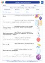 Biology - High School - Vocabulary: Cell structure and function
