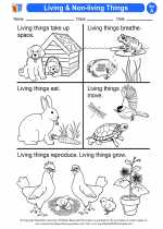 Science - First Grade - Activity Lesson: Living & Non-living Things