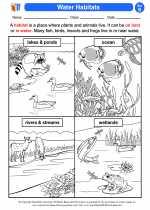 Science - Second Grade - Activity Lesson: Water Habitats