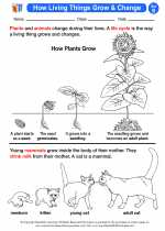Science - Second Grade - Activity Lesson: How Living Things Grow & Change
